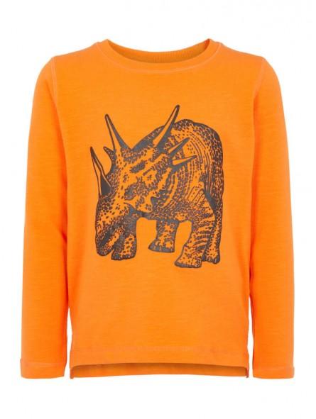 Camiseta dinosaurio M/L, NAME IT