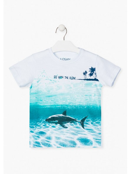Camiseta tiburón, LOSAN